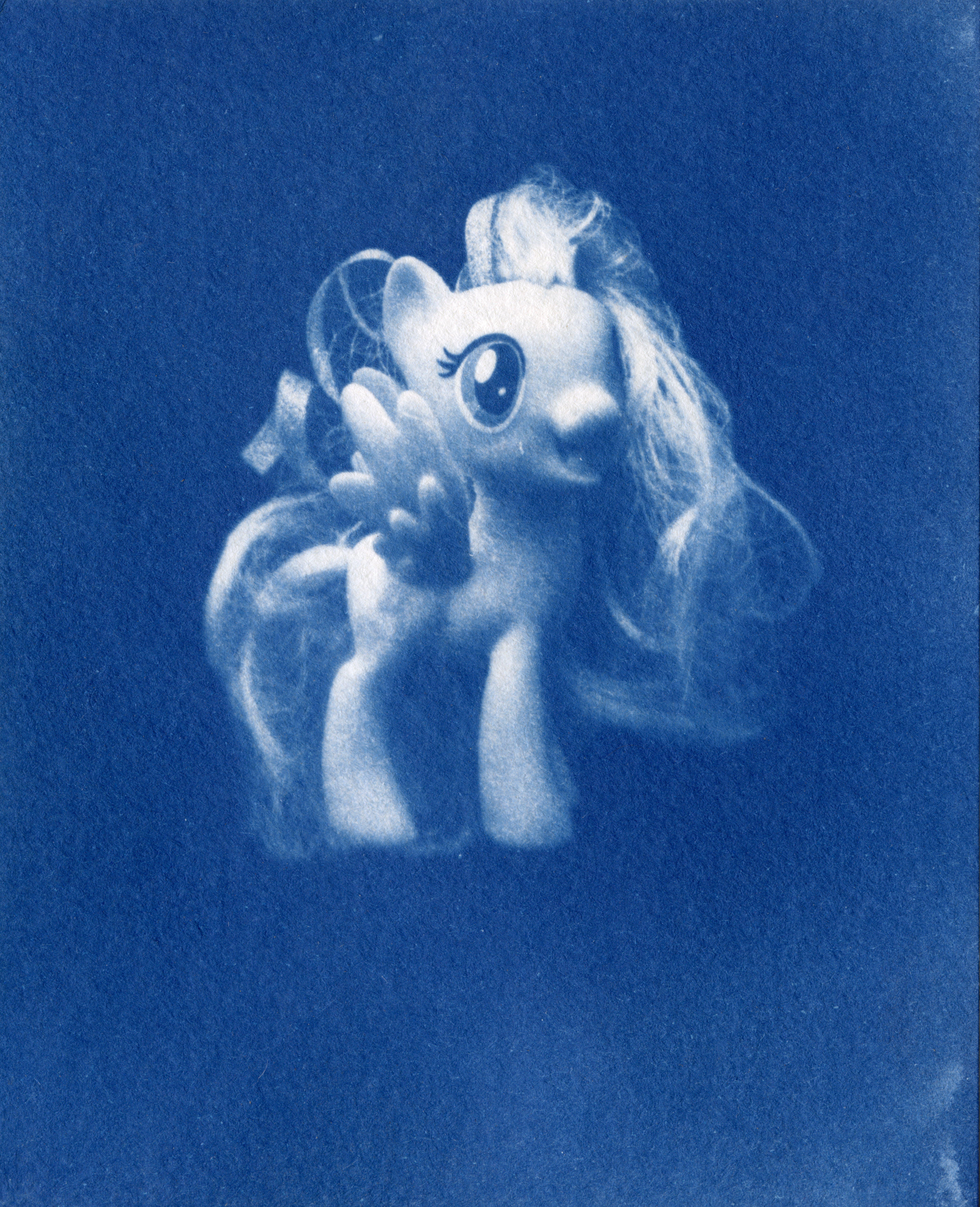cyanotype01.jpg